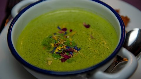 Cream of Spinach Soup: Greens Like Never Before