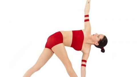 Parivrtta Trikonasana Stretch (Revolved Triangle Stretch)