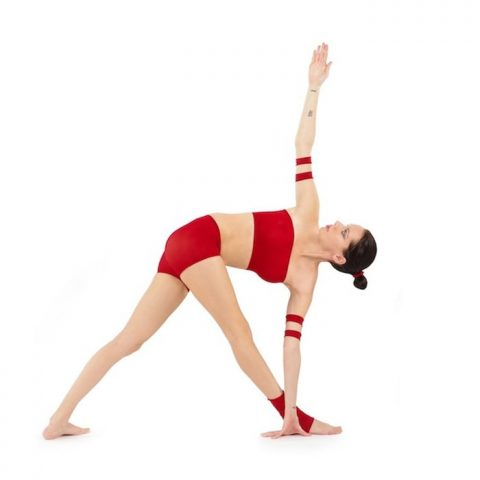 Parivrtta Trikonasana Stretch (Revolved Triangle Stretch)