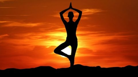 Yoga: The Path to your Holistic Health and Development